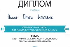 Сертификат Яккар2